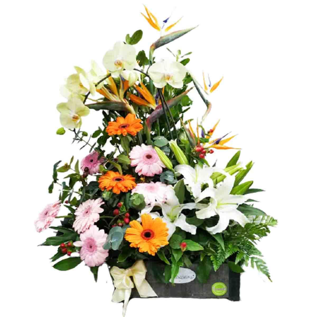 Arreglo Floral con Orquideas y Lirios